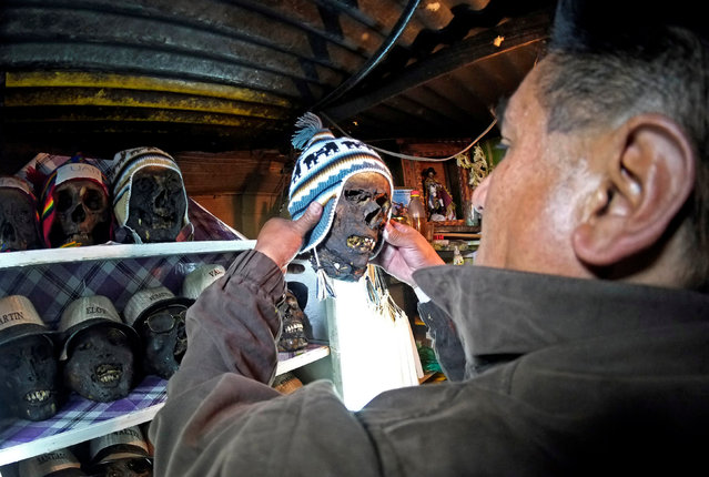 A devotee holds a skull before the celebrations of The Day of Skulls in El Alto, on the outskirts of La Paz, Bolivia, November 7, 2016. (Photo by David Mercado/Reuters)