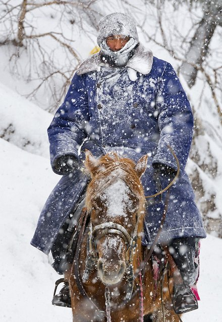 A Kazakh man sits on a horse as he herds his sheep amid heavy snowfall in Yili, Xinjiang Uighur Autonomous Region March 12, 2015. (Photo by Reuters/China Daily)