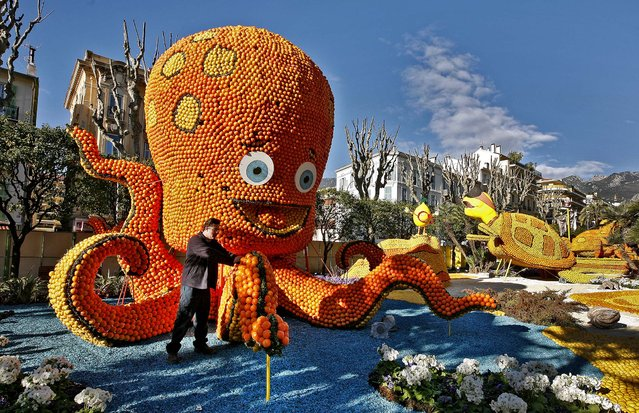 "A worker sets up an octopus made with lemons and oranges during the 81st Lemon festival in Menton, France, on February 14, 2014. The theme this year is ""Twenty Thousand Leagues Under the Sea"" from the classic science fiction novel by French writer Jules Verne. More than 300 professionals work on the project, which uses 145 tons of citrus fruits. (Photo by Lionel Cironneau/Associated Press)"