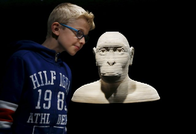 "A young visitor observes a 3D model of an australopythecus afarensis during a visit to the ""Gallery of Humankind. Our evolution, our body"" exhibition at the Museum of Natural Sciences in Brussels, Belgium, May 22, 2015. (Photo by Francois Lenoir/Reuters)"