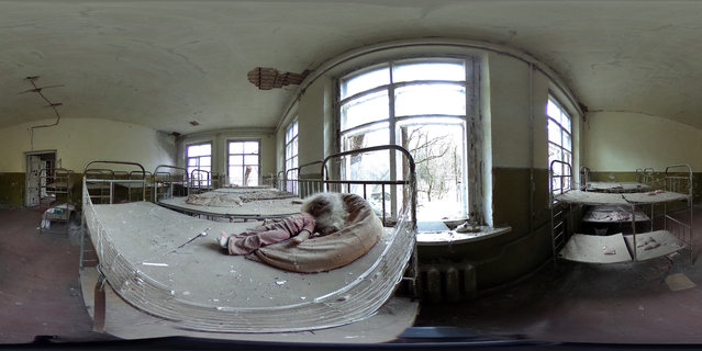 A blackened doll lies on a bed in an abandoned kindergarten on April 9, 2016 in Kopachi, Ukraine. (Photo by Sean Gallup/Getty Images)
