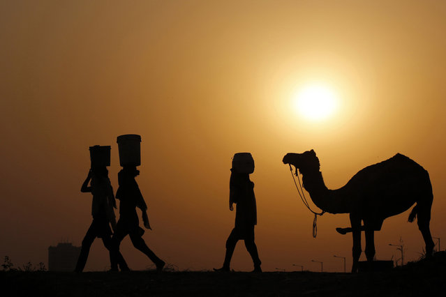 Girls carrying buckets filled with water are silhouetted against the setting sun as they walk past a camel on the banks of river Yamuna in New Delhi May 1, 2014. (Photo by Anindito Mukherjee/Reuters)