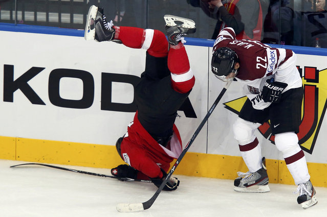 Switzerland's Yannick Weber (L) falls after a collision with Latvia's Maris Jass (R) during the third period of their men's ice hockey World Championship Group B game at Minsk Arena in Minsk May 20, 2014. (Photo by Alexander Demianchuk/Reuters)
