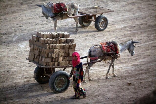 An Iraqi girl walks past a donkey-drawn cart carrying bricks at a brick factory near the central Iraqi shrine city of Najaf on May 16, 2017. (Photo by Haidar Hamdani/AFP Photo)