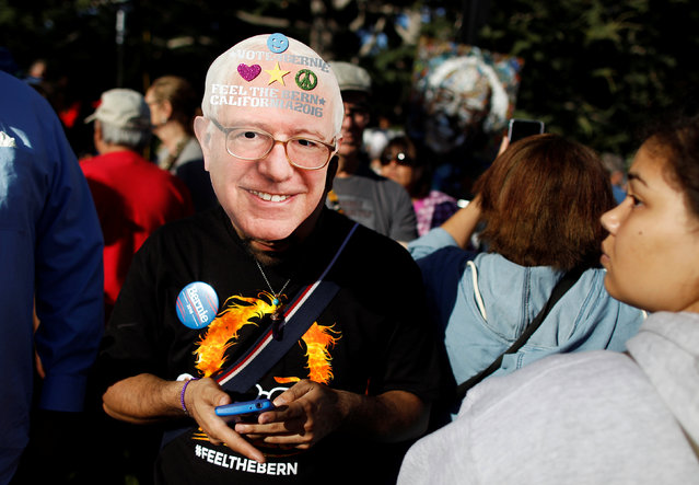 A Bernie Sanders supporter texts before the U S. Democratic presidential candidate's campaign rally at Colton Hall in Monterey, California, U.S., May 31, 2016. (Photo by Michael Fiala/Reuters)