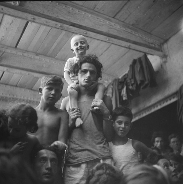 """Some of the 4,400 Jewish illegal immigrants aboard the SS President Warfield """"Exodus 1947"""" who were intercepted while attempting to illegally enter Palestine are expected to disembark peacefully when the three transports reach Hamburg. The ships have been anchored for three weeks when the ships reached Port De Bouc, France, August 22, 1947. British Royal Navy seized the ship and deported all its passengers back to Europe. (Photo by AP Photo)"""