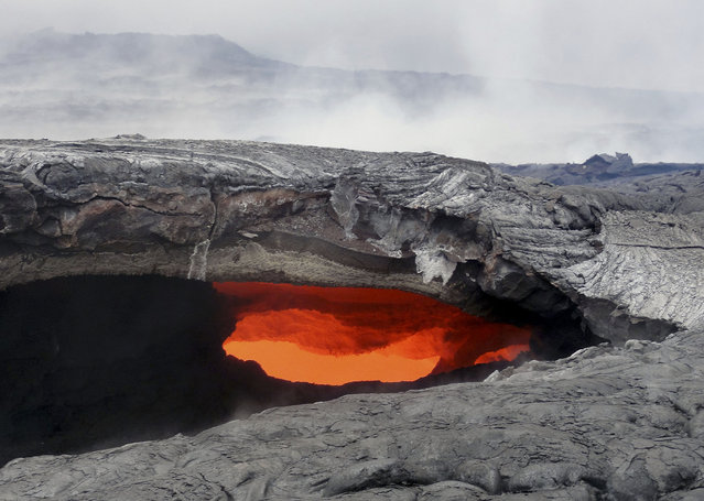 This August 12, 2014 photo released by the U.S. Geological Survey shows a fluid lava stream within the main tube of the June 27 lava flow from the Kilauea volcano Pahoa, Hawaii. The June 27 lava flow, named for the date it began erupting from a new vent, isn't an immediate threat to homes or structures downhill of the flow, but could become one in weeks or months if it continues to advance, the U.S. Geographical Survey's Hawaiian Volcano Observatory said. (Photo by AP Photo/U.S. Geological Survey)