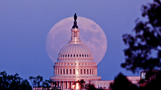 The moon rises behind the U.S. Capitol in Washington, D.C., November 13, 2016. (Photo by Bill Workinger)