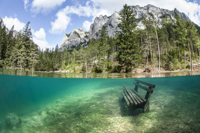The flood water which has created an underwater world. Green Lake in Tragoess, Austria. (Photo by Solnet/The Grosby Group)