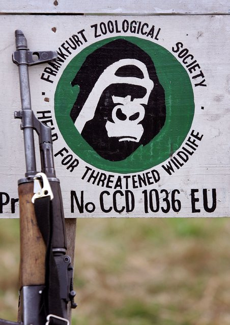 An AK-47 assault rifle rests against a sign at the entrance of a paramilitary training center for park rangers July 21, 2006 at Ishango in the Virunga National Park in eastern Democratic Republic of Congo. (Photo by John Moore/Getty Images)