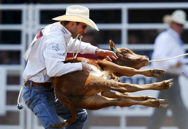 Shane Hanchey of Sulpher, Louisiana flips a calf in the tie-down roping event during the Calgary Stampede rodeo in Calgary, Alberta, July 10, 2015. (Photo by Todd Korol/Reuters)