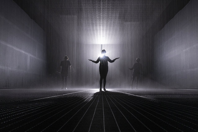 "Art installation ""Rain Room"" by Random International is seen in the Jackalope Pavilion on August 08, 2019 in Melbourne, Australia. The installation is a 100 square metre field of continuous rainfall, and is a responsive environment engaging all the senses; millions of water droplets respond to your presence by ceasing to fall wherever movement is detected, allowing you to be fully immersed in the rain while simultaneously protected from it. (Photo by Daniel Pockett/Getty Images)"