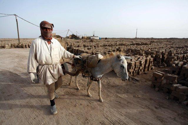 An Iraqi man carries bricks on a donkey-drawn cart at a brick factory near the central Iraqi shrine city of Najaf on May 16, 2017. (Photo by Haidar Hamdani/AFP Photo)