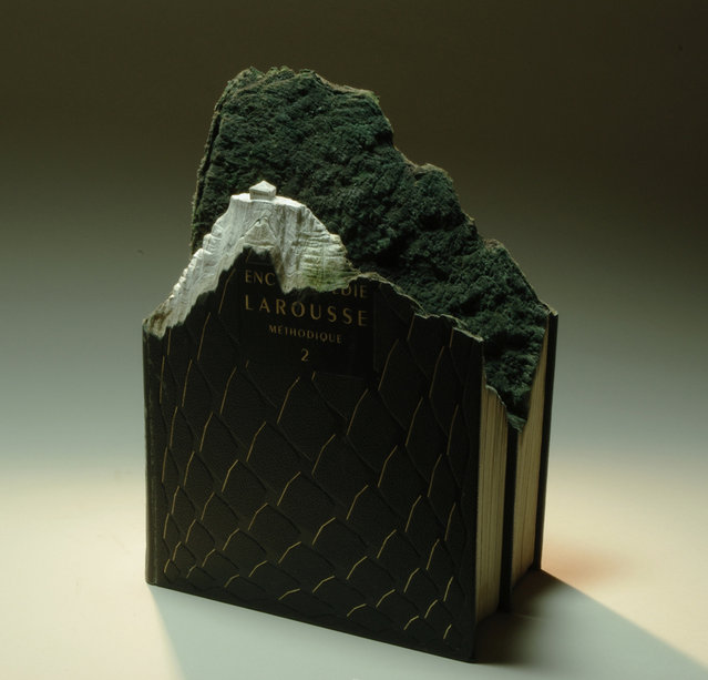 Landscapes Carved Out of Books by Guy Laramee
