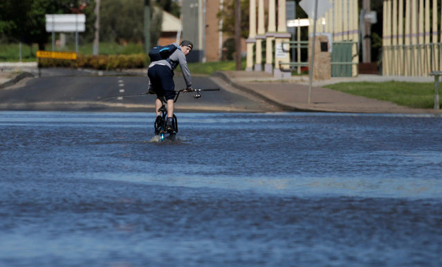 A cyclist pedals across a road flooded by the overflowing Lachlan River after a natural disaster zone was declared in the midwestern New South Wales town of Forbes, Australia, September 27, 2016. (Photo by Jason Reed/Reuters)