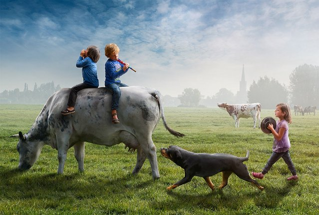 Funny Photography By Adrian Sommeling