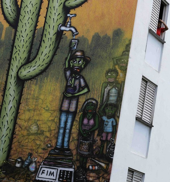 A resident looks out of her apartment in a building painted with a drought-related mural, painted by Brazilian artist Mundano, depicting a man getting water from a cactus plant, in Sao Paulo November 25, 2014. (Photo by Nacho Doce/Reuters)