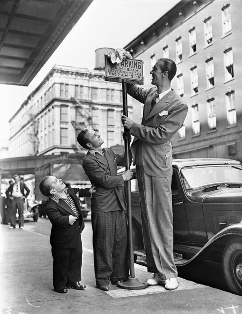 """Stanley Ross, 26, of Detroit 3 ft. 2 inches tall, left, Tommy Lowe 36, 5-ft. 5-inches of New York and Henry Hite, 21, of Atlanta, 7 ft. , 9-inches, stopped in Chicago en route to Wyoming on August 24, 1936. Here they are illustrating their version of """"up"""". (Photo by AP Photo)"""