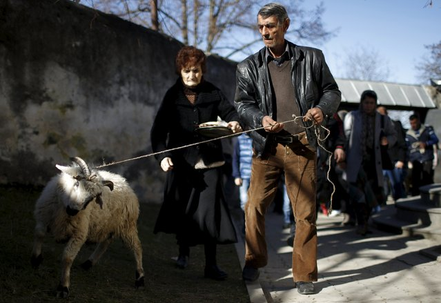 People walk around a church with a sheep for sacrifice during St. George's Day celebration in the village of Ikalto, Georgia, November 23, 2015. (Photo by David Mdzinarishvili/Reuters)