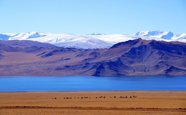 Lake Tolbo, located in the Bayan Olgiy Province of Mongolia. (Photo by Brad Ruoho/The Star Tribune)
