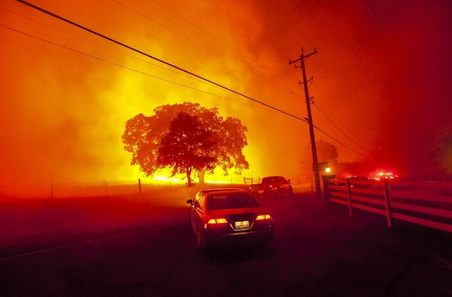 Residents flee as winds whip flames from the Morgan fire near Clayton, California, on September 9, 2013. The blaze has scorched some 3,700 acres and forced the evacuation of about 100 homes. (Photo by Noah Berger/Reuters)