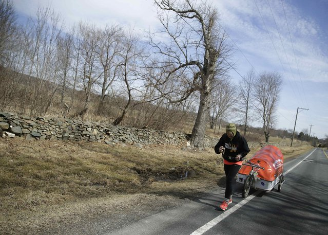 "Sixty-eight year old cross-country runner Rosie Swale-Pope struggles with an uphill grade on U.S. Route 50 while pulling her cart, ""The Icebird"", in Upperville, Virginia March 13, 2015. (Photo by Gary Cameron/Reuters)"