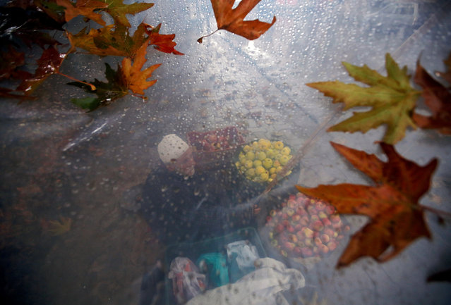 A roadside vendor selling apples is seen through a plastic sheet that he uses to cover himself from rain, in Srinagar November 14, 2018. (Photo by Danish Ismail/Reuters)