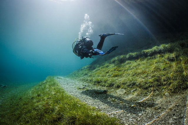 A diver goes over a footpath in the flood water. Green Lake in Tragoess, Austria. (Photo by Solnet/The Grosby Group)