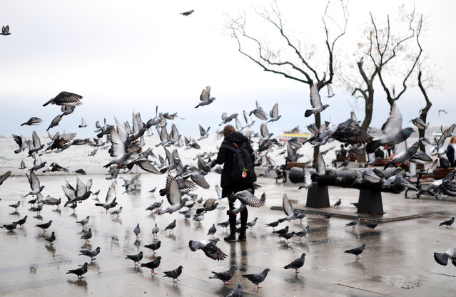 A Turkish woman feeds pigeons during a rainy day on November 25, 2013 at Besiktas in Istanbul. (Photo by Bulent Kilic/AFP Photo)