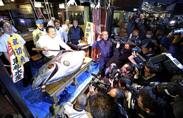 Kiyoshi Kimura (2nd from L), president of sushi restaurant chain Sushi-Zanmai, poses with the 212 kg bluefin tuna he won bid for 74 million Japanese yen ( approximately US $632,000 ) at at the Tsukiji fish market in Chuo Ward, Tokyo on January 5, 2017. The endangered bluefish tuna fetched the second highest price in history at the New Year's market auction. (Photo by The Yomiuri Shimbun via AP Images)