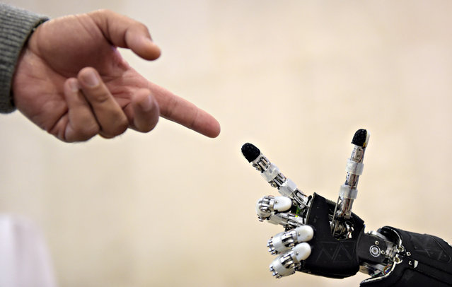A man moves his finger toward the finger of humanoid robot iCub during the 2014 IEEE-RAS International Conference on Humanoid Robots in Madrid, November 18, 2014. (Photo by Gerard Julien/AFP Photo)