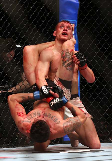 Ultimate Fighting Championship, UFC Fight Night 83, O2 Arena, London, England February 27, 2016: Ecuador's Marlon Vera (Front) and England's Davey Grant (Back) in action. (Photo by Matthew Childs/Reuters/Action Images)