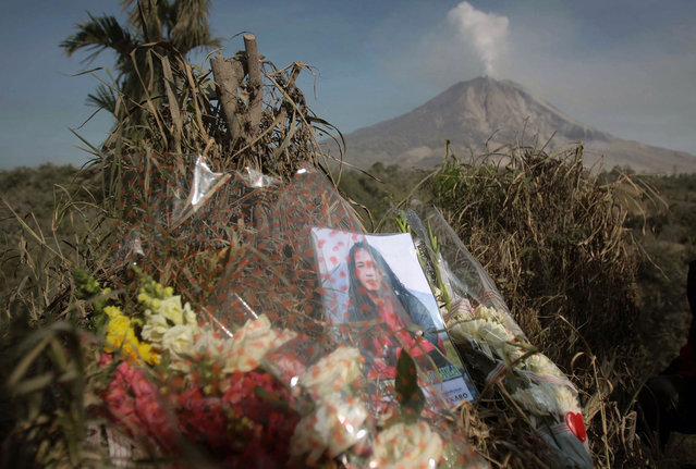 Flowers and a portrait of a victim killed during the eruption of Mount Sinabung volcano are left by relatives on a hill in Karo district overlooking the volcano in the background on February 5, 2014. The volcano in western Indonesia that killed 15 people in a weekend eruption shot hot ash and rocks high into the air again on February 3, halting a search for any more victims. (Photo by AFP Photo/ATAR)