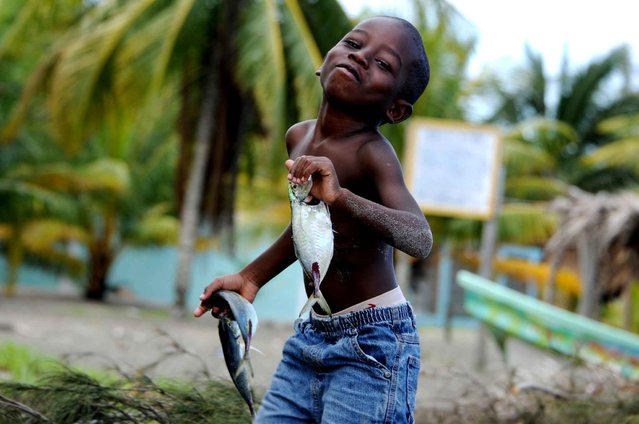 A Garifuna child carries fishes at the beach in El Triunfo de la Cruz, over the Caribbean Sea, 300 km north of Tegucigalpa, on February 10, 2014. (Photo by Orlando Sierra/AFP Photo)