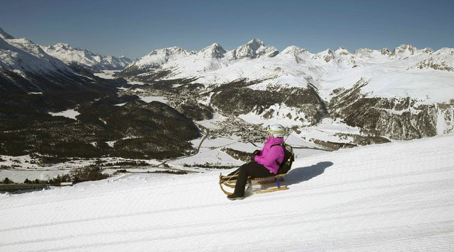 A woman rides down a public sledge course during a sunny winter's day at the Muottas Muragle mountain near the resort of St. Moritz, Switzerland March 18, 2016. (Photo by Arnd Wiegmann/Reuters)