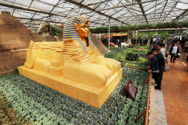 A replica of the Sphinx statue which is partly made of cereals is seen during an exhibition in Shouguang, Shandong Province, China, April 20, 2016. (Photo by Reuters/Stringer)