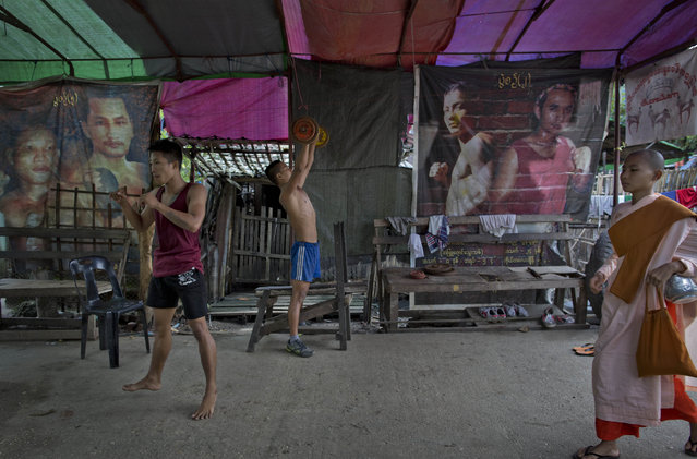 In this Wednesday, July 15, 2015, photo, a Buddhist nun walks to collect alms as a member of the White New Blood lethwei fighters club, a Myanmar traditional martial-arts club which practices a rough form of kickboxing, lifts-weights as another punches the air in their gym on a street in Oakalarpa, north of Yangon, Myanmar. (Photo by Gemunu Amarasinghe/AP Photo)