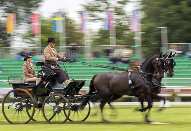 Arndt Loercher of Germany drives his horses during the World Pairs Driving Championships in Fabiansebestyen, Hungary, 11 September 2015. (Photo by Tibor Rosta/EPA)