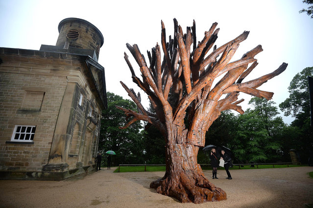 """""""Iron Tree"""", a sculpture by Chinese artist Ai Weiwei is seen displayed in a courtyard of the chapel at the Yorkshire Sculpture Park in Wakefield, northern England May 23, 2014. (Photo by Nigel Roddis/Reuters)"""