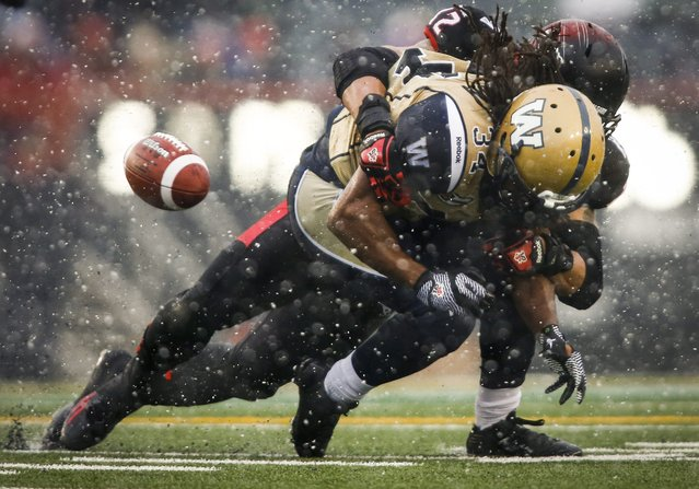 Winnipeg Blue Bombers' Paris Cotton (34) fumbles the ball as he is tackled by Calgary Stampeders' Juwan Simpson during the first half of a CFL football game as snow falls in Calgary, Alberta, Saturday, November 1, 2014. (Photo by Jeff McIntosh/AP Photo/The Canadian Press)