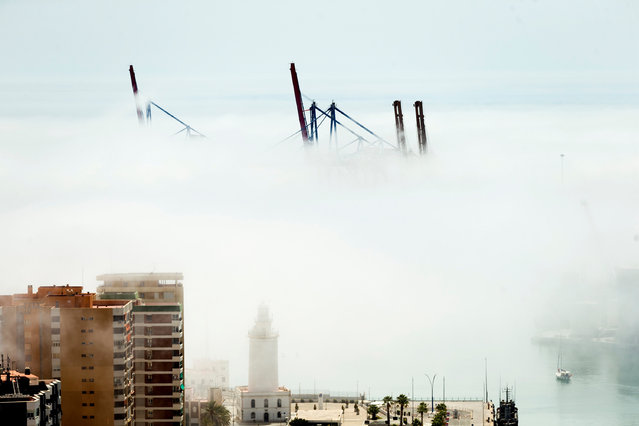 """""""Taro"""" fog covers the cranes at the port in Malaga, Spain, 20 August 2020. The so-called """"taro"""" fog is a thick and persistent fog that appears, during summer, between Malaga, southern Spain, and Ceuta, Spanish enclave on the North of Africa. (Photo by Jorge Zapata/EPA/EFE/Rex Features/Shutterstock)"""