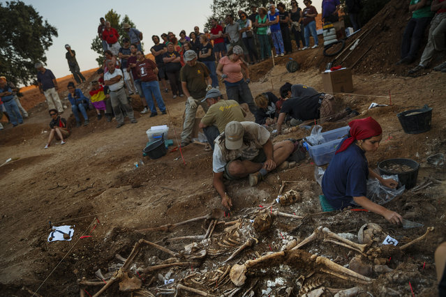 In this photo taken on July 26, 2014, volunteer archaeologists, anthropologists and forensic scientists from the Aranzadi Sciences Society and Association for the Recovery of Historical Memory of Burgos work in what it was a hidden mass grave in El Estepar, Spain. (Photo by Daniel Ochoa de Olza/AP Photo)