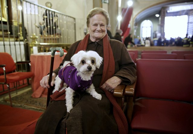 A woman holds her dog as she waits for a mass in San Anton Church in Madrid, Spain, January 17, 2016. (Photo by Andrea Comas/Reuters)