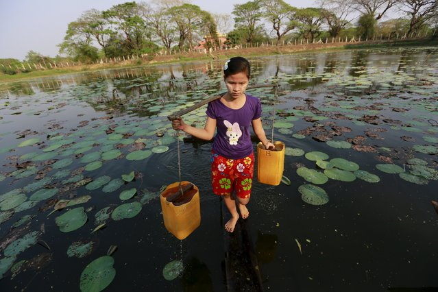 A girl collects drinking water at Dala river outside Yangon, Myanmar March 3, 2016. (Photo by Soe Zeya Tun/Reuters)