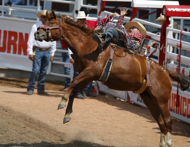 Tristan Hansen of Victor, Idaho rides the horse Xposed To Dust in the Novice Bareback event during the Calgary Stampede rodeo in Calgary, Alberta, July 10, 2015. (Photo by Todd Korol/Reuters)