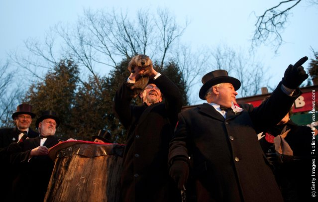 In Groundhog Day Tradition, Punxsutawney Phil Predicts End Of Winter