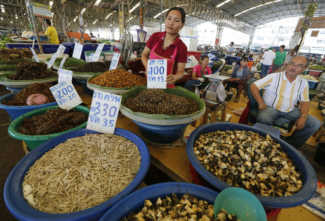 Thai vendors stand next to edible insects for sale at Talad Thai market in Pathum Thani province on the outskirts of Bangkok, Thailand, 15 July 2013. Insects have long been on the menu in Thailand, but academics and the United Nation's Food and Agriculture Organization (FAO) officials are hoping they will become a more common global source of protein and nutrients to meet the need for growing world food requirements in the future. (Photo by Narong Sangnak/EPA)
