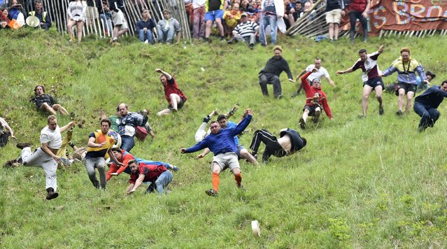 Contestants take part in the last mens race at the annual cheese rolling festival on Coopers hill in Gloucesteshire, England, 30 May 2016. People fall down the historically steep hill to win the Gloucester cheese prize. (Photo by Neil Munns/EPA)