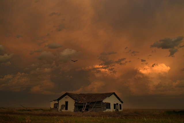 The sun sets over the ruin of a farm house in Baca County on June 20, 2017 in Lycan, Colorado. Baca County peaked in 1930, then lost two-thirds of its population. (Photo by RJ Sangosti/The Denver Post)