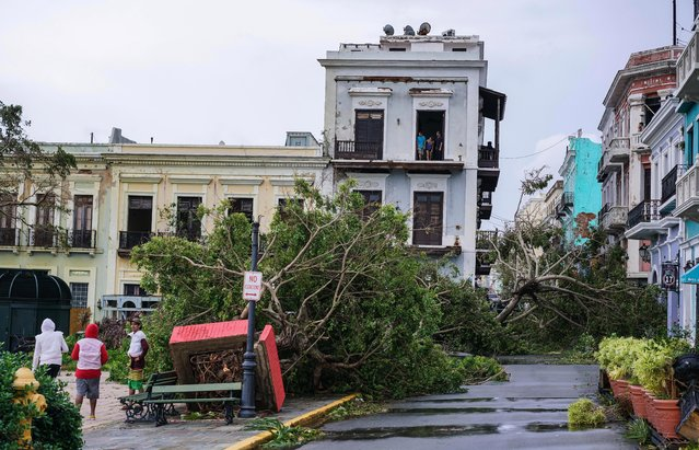 Plaza Colon is covered in fallen trees after Hurricane Maria at Old San Juan in San Juan, Puerto Rico on September 20, 2017. (Photo by Pablo Pantoja/Anadolu Agency/Getty Images)
